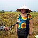 Đánh giá mô hình ứng dụng chế phẩm vi sinh AT-YTB tại huyện Thạch Thất - Hà Nội