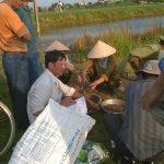 Xử lý rơm rạ trên đồng ruộng tại tỉnh Thái Bình
