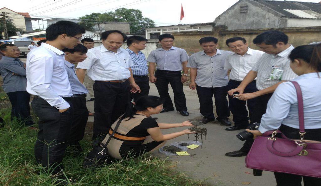 Kết quả của rơm rạ sau khi đã được xử lý tại đồng ruộng xã Hoàng Quế - Đông Triều - Quảng ninh (rơm rạ đã được phân hủy thành bùn non sau 7 ngày).