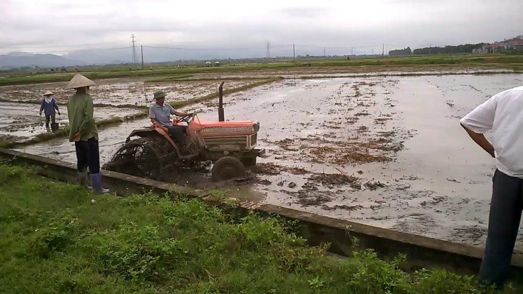 Sử dụng chế phẩm vi sinh AT-YTB trên đồng ruộng xã Nguyễn Huệ