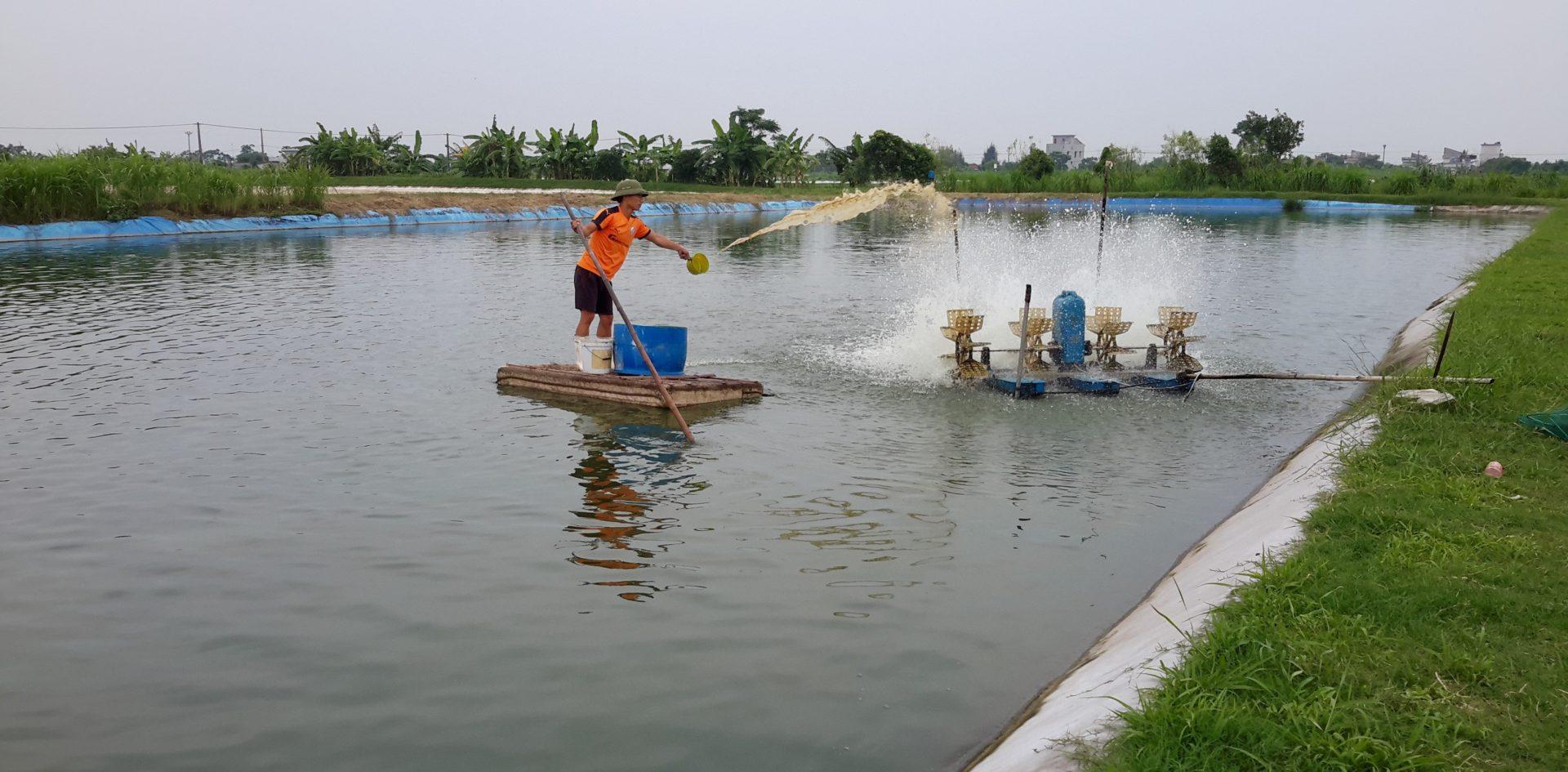 Ứng dụng trong thủy sản