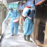 Sử dụng chế phẩm sinh học AT-YTB xử lý môi trường chăn nuôi lợn