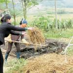 Chế phẩm vi sinh AT - YTB: Góp phần cải tạo môi trường và phát triển nông nghiệp