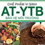 Tạo nguồn phân hữu cơ để trồng rau sạch từ rác gia đình và vi sinh AT-YTB