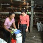 VTV2 truyền thông về vi sinh của công ty TMH  xử lí ô nhiễm chăn nuôi và xử lí rơm rạ