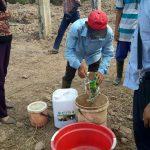 Đệm lót cho bò bằng vi sinh AT-YTB xử lí mùi hôi thối cho hộ chăn nuôi bò Thái Bình
