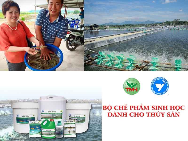 Phòng ngừa hiệu quả bệnh phân trắng trên tôm với chế phẩm vi sinh từ Trường đại học y dược Thái Bình